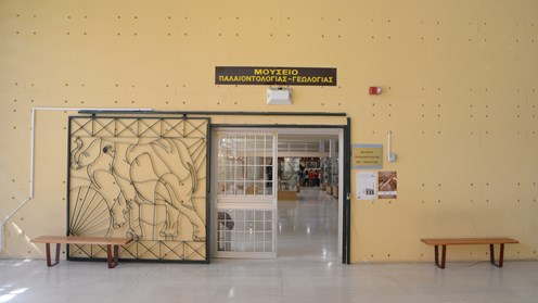 Museum of Geology and Paleontology