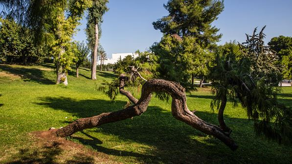Eleftherias-Park (Friedenspark)