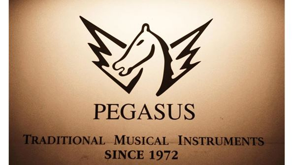 Pegasus Music Store and Workshop